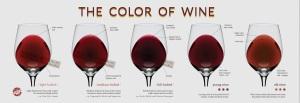 Kleuren rode wijn volgens Wine Folly