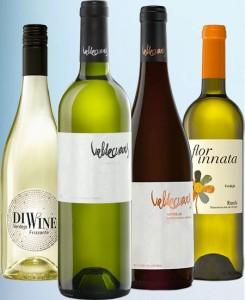 Valdecuevas wijnen